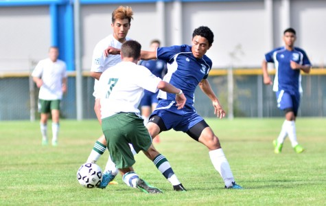 Comets' solid communication dominates Knights