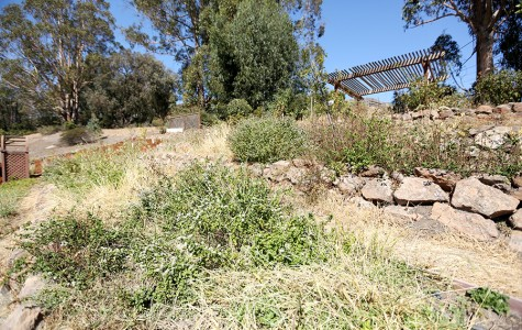 Garden 'ignored' over summer, undergoes restoration