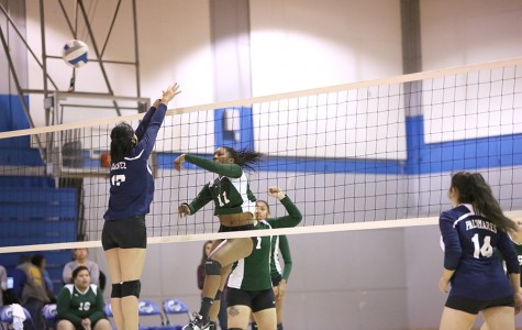 Volleyball struggles with momentum, unable to restrain Laney