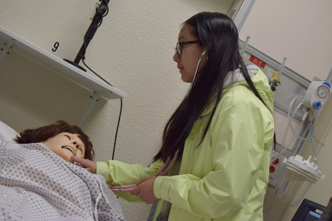 Health academy students stimulate interests