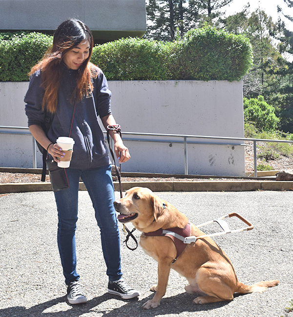 Golden+retriever+Oscar+helps+psychology+major+Michelle+Yoo+as+her+guide+due+to+Yoo%E2%80%99s+partial+blindness.+Yoo+requested+a+service+dog+at+the+Disabled+Students%E2%80%99+Programs+and+Services+Office+on+campus.