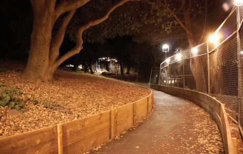 Light installation give students safer walking path