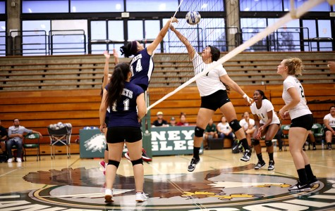 Comet right hitter Amy Palomares tips the ball over the net and Eagle middle blocker Stephanie Sandria during Contra Costa College's loss to Laney College in Oakland on Friday.