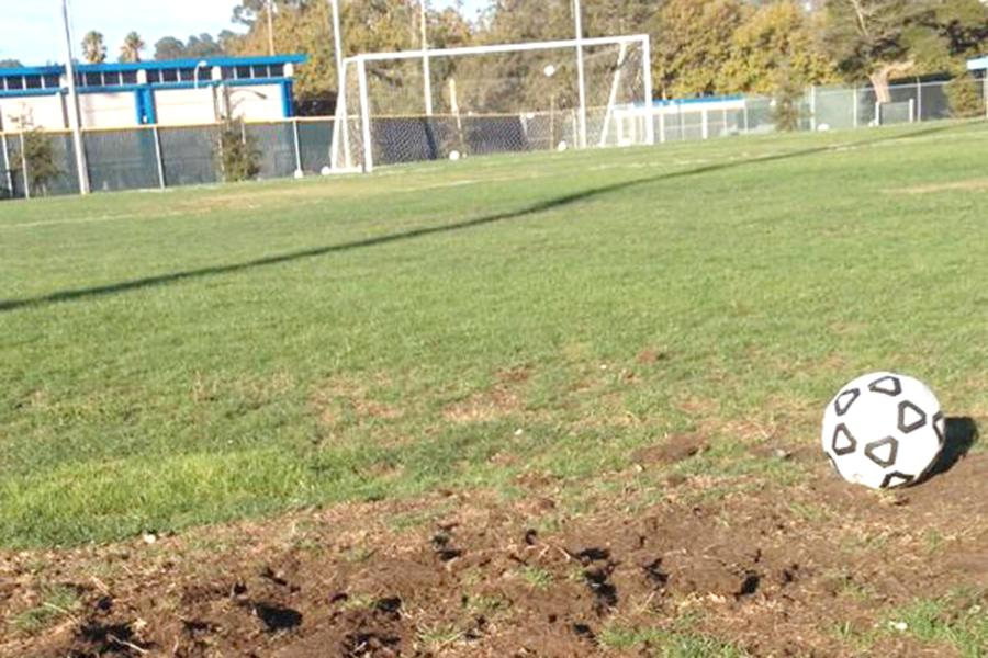 A hole clearly visible on the Soccer Field shows the current state of the field and how neglected it has become and, in certain instances, dangerous for players.