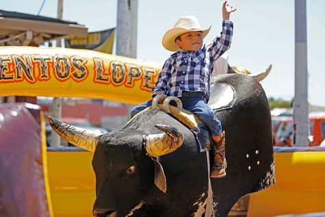 El Sobrante resident Juan Lopez rides a mechanical bull provided by Eventos Lopez at the Cinco de Mayo Festival on 23rd Street in Richmond on Sunday.