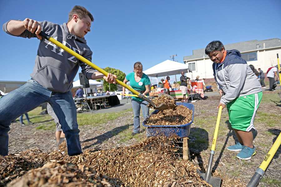 Kinesiology Major Andrew Lilly (left), health and human services major Shelby Wichner and Pinole resident Allen Pablo shovel gravel into wheelbarrows to spread across the lot to deter weed growth and beatify the area during the Youth Service Day on the Richmond Greenway event at South 42 St & Ohio Ave on Saturday.