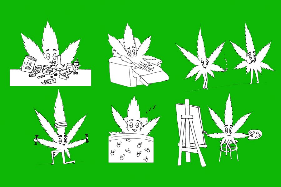 Two cannabis strains, effects compared