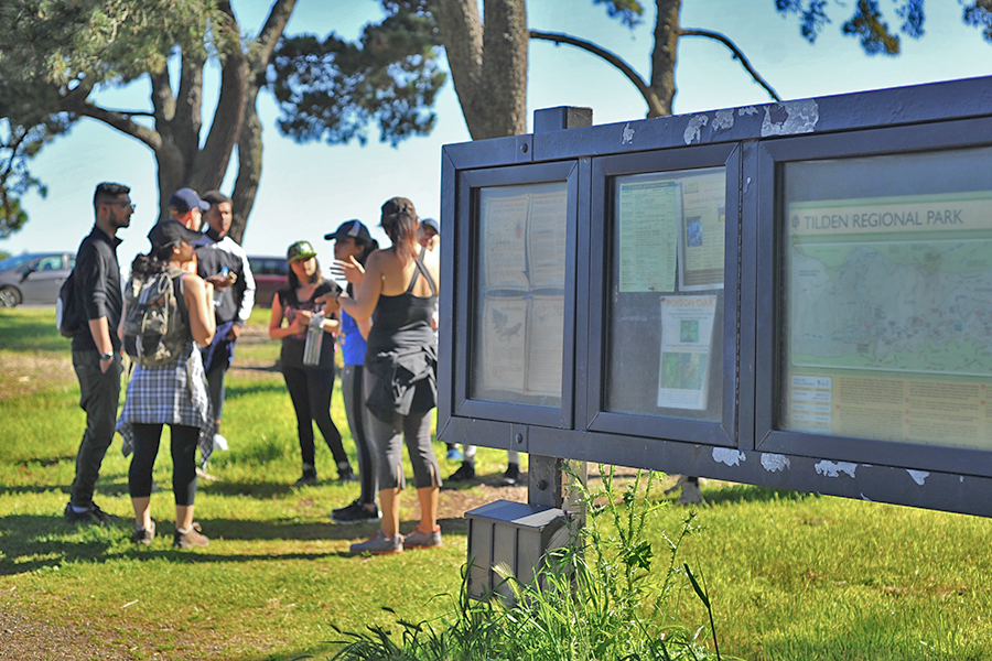 The+Outdoor+and+Adventure+club+gather+at+Inspiration+Point+in+Tilden+Regional+Park+for+a+hike+in+Berkeley%2C+Calif+on+April+30th.+
