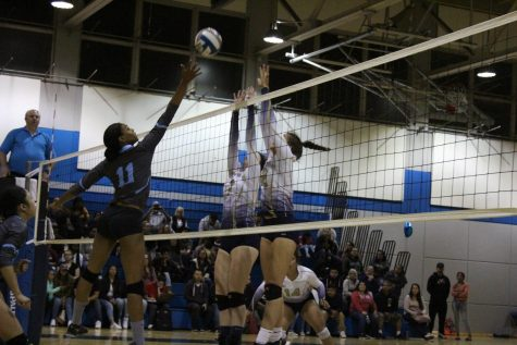 Volleyball ends season with a loss