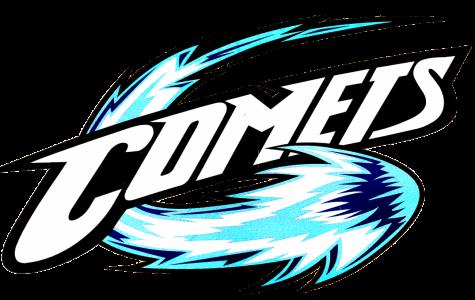 Council approves new logo design