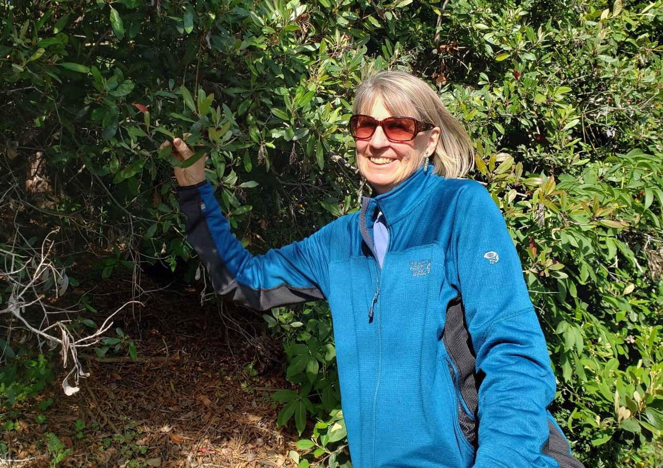 Biological sciences professor Pamela Muick, who leads her BioSci 110L class on hikes,  stands next to a holly tree as she observes the diverse ecosystem offered on the Contra Costa College campus.