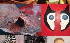 'Series of Seven' display student work